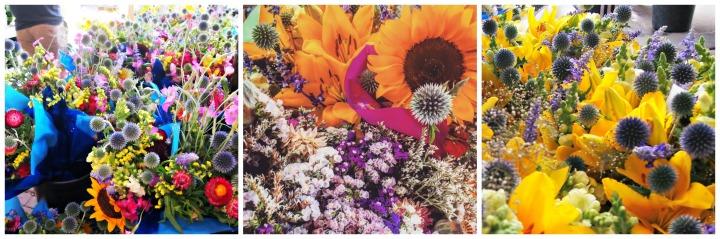 SPFM Flower Collage 1